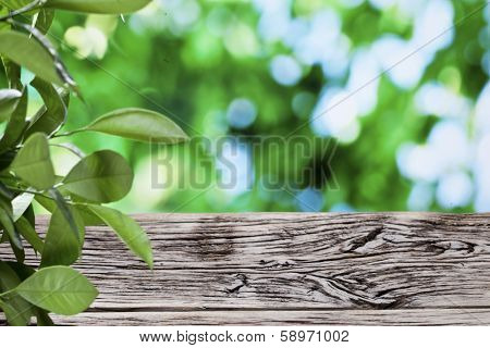 Old wooden table with green foliage background.
