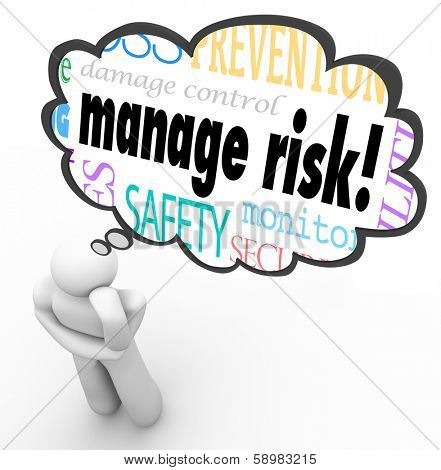 Manage Risk Thinker Thought Cloud Limit Loss Liability Ideas