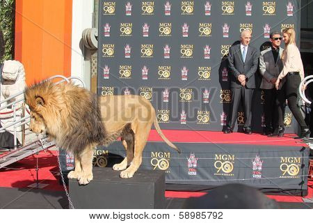 LOS ANGELES - JAN 22:  Leo the Lion, Gary Barber, Sylvester Stallone at the MGM 90th Anniversary Celebration Kick-Off Event at TCL Chinese Theater on January 22, 2014 in Los Angeles, CA