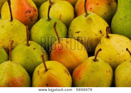 Background From Yellow And Green Pears