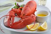 foto of butter-lettuce  - Boiled lobster on a plate with butter - JPG