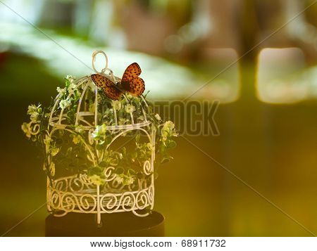 White Birdcage With Flower And Butterfly