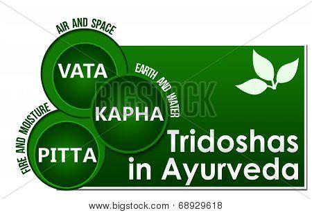 Tridoshas In Ayurveda Three Circles
