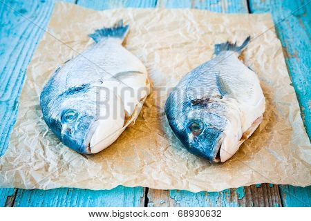 Two Raw Dorada Fishes