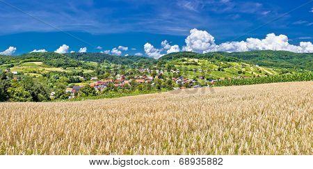 Idyllic Agricultural Landscape Of Kalnik Mountain