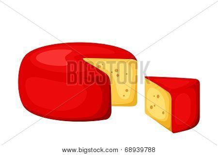 Cheese wheel. Vector illustration.