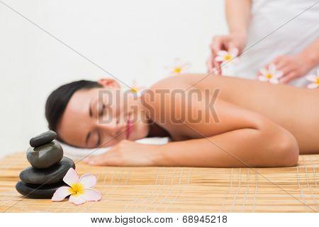 Beautiful brunette enjoying a flower back massage in the health spa