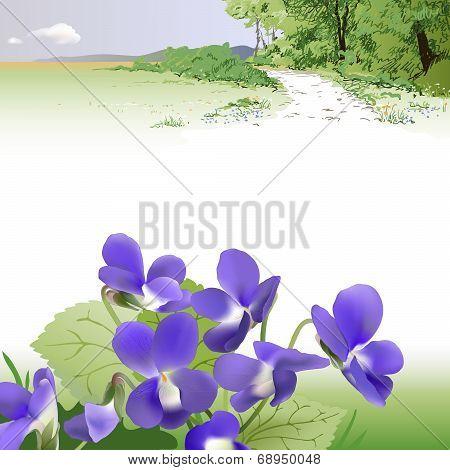 Spring landscape and Violets
