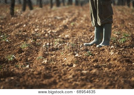 Low section of farmer standing on fertile soil in farm