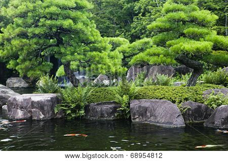 Japan, Himeji, Himeji Koko-en Gardens, pond with Koi Carps