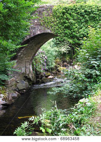 Bridge And River Landscape