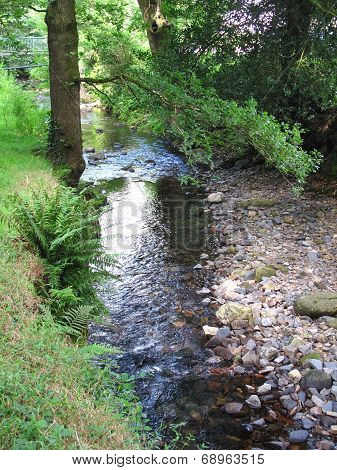 Rural Stream Landscape