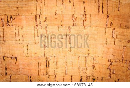 Wooden Pith A Texture