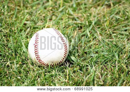 Baseball On The Grass