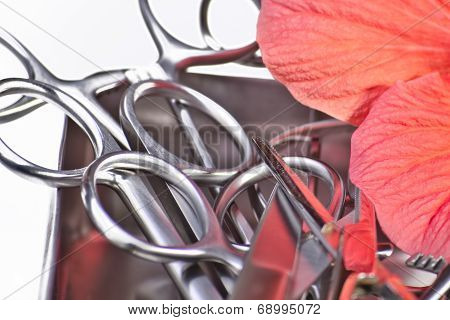 Surgical Instruments With Rose