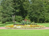 image of pubescent  - A flower bed in the Botanical Gardens of St - JPG