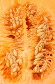 foto of cantaloupe  - close up of ripe cantaloupe melon - JPG