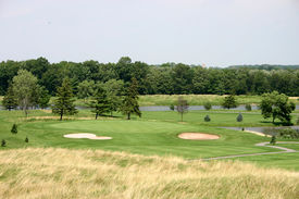 picture of fescue  - view from the fescue to the green - JPG