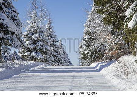 Beautiful sunny winter day
