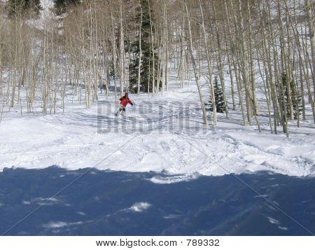 Skier in Aspens
