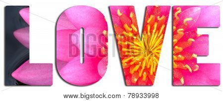 Love Text Filled With Pink Waterlily