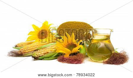 Sunflower Oil, Sunflower And Corn On The Cob Isolated On White Background