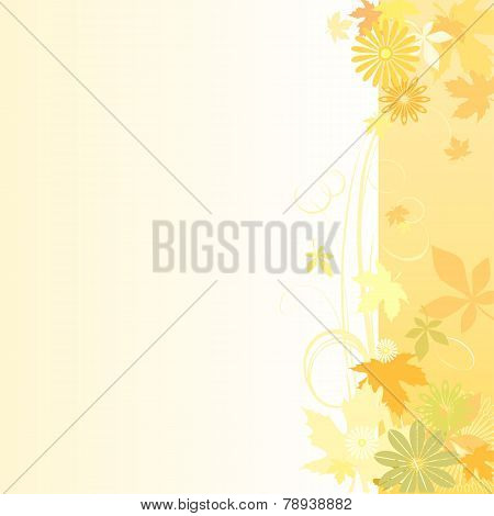 Floral  Background In Early Autumn