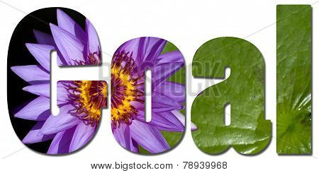 Text Filled With Violet Waterlily