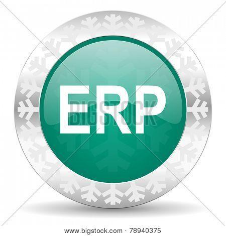 erp green icon, christmas button