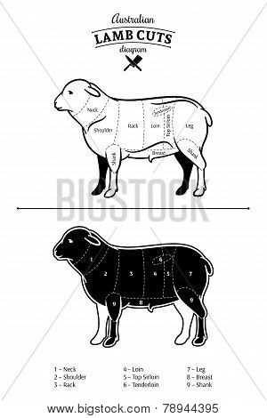Australian Lamb Cuts Diagram