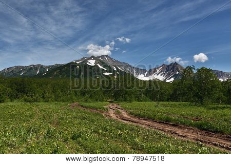Forest Road The Mountains Of Kamchatka Peninsula