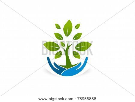 root care healthy grow business logo