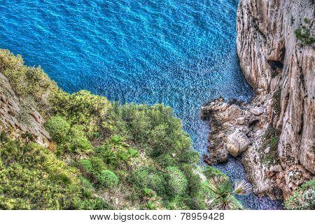 Capo Caccia Shore With Rocks And Plants