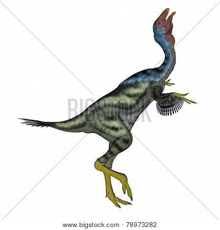 Caudipteryx dinosaur head up- 3D render
