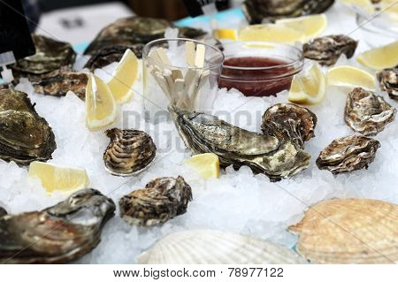 The Oysters With Slices Of Lemon