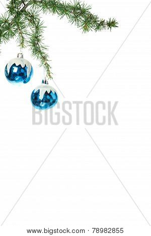 Decoration With Green Pine Or Fir And Blue Snow Roud Ball Ornaments
