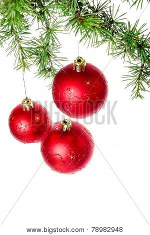 Decoration With Green Pine Or Fir And Red Roud Ball Ornaments For Christmas