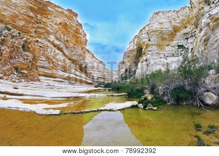 Ein Avdat National Park in the Negev desert. Magnificent canyon, creek and picturesque waterfall