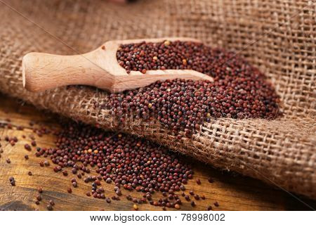 Mustard powder in wooden spoon on mustard seeds, on sackcloth background