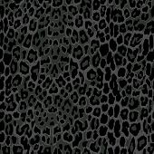 stock photo of leopard  - seamless black leopard print - JPG