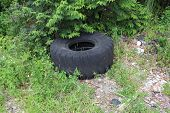 stock photo of discard  - a picture of an old tire discarded - JPG