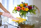 image of cleaning house  - Cleaning house flowers on table woman clean dust - JPG