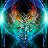 stock photo of aura  - The colored Aura of a single Tree - JPG