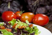 picture of chicory  - Mixed salad with red chicory and tomato - JPG