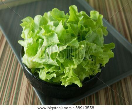 Fresh Green Lettuce Leaves in A Bowl