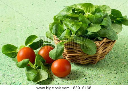 Corn Salad (salad Rapunzel, Lamb's Lettuce) And Tomatoes