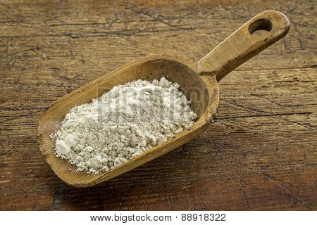 gluten free quinoa flour on a wooden scoop against weathered wood