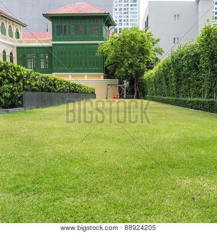 Green Grass And Cones With Asian Style Building