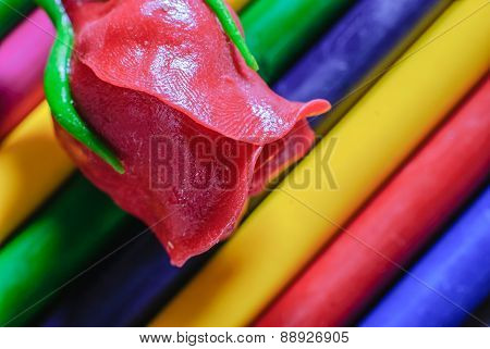 Rose And Crayons