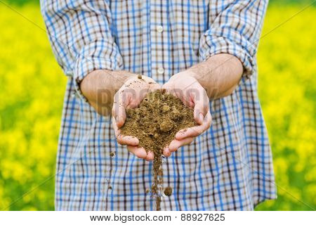Farmer Checking Soil Quality Of Fertile Agricultural Farm Land